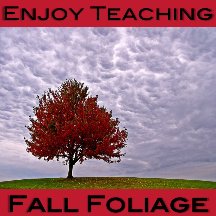Enjoy Teaching Fall Foliage