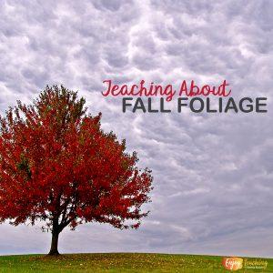 Teaching Fall Foliage Cover