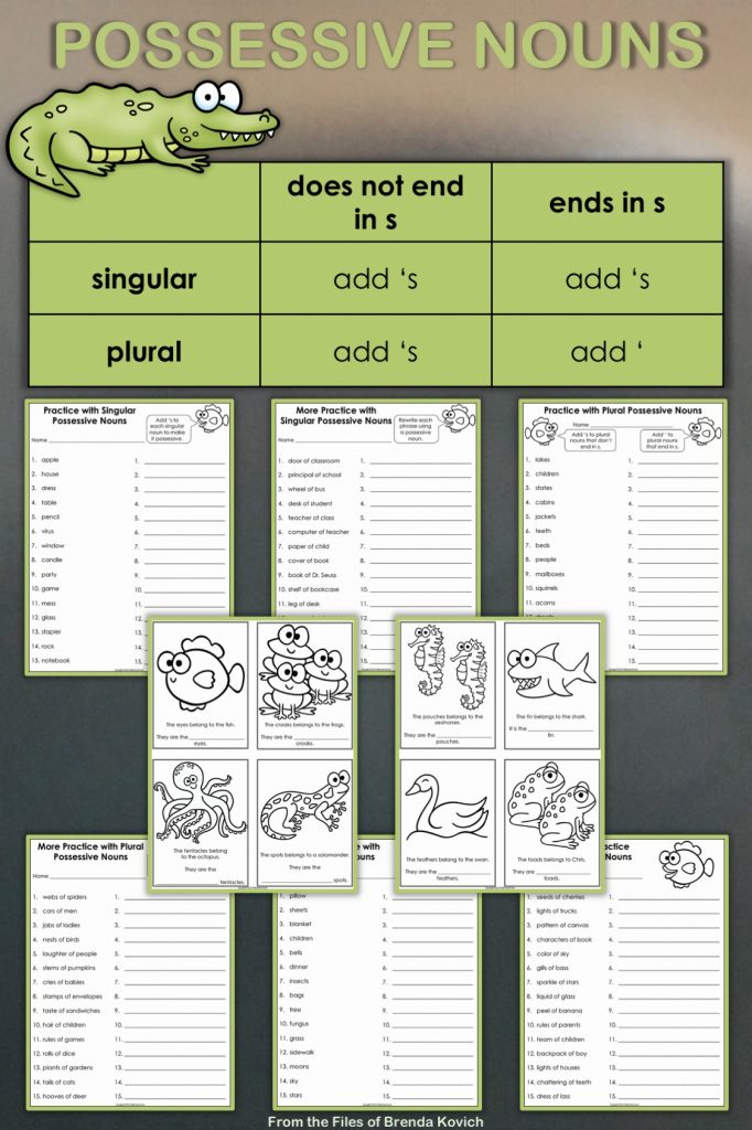 Teaching possessive nouns is easy with this set of worksheets! They're great for kids in third and fourth grades.