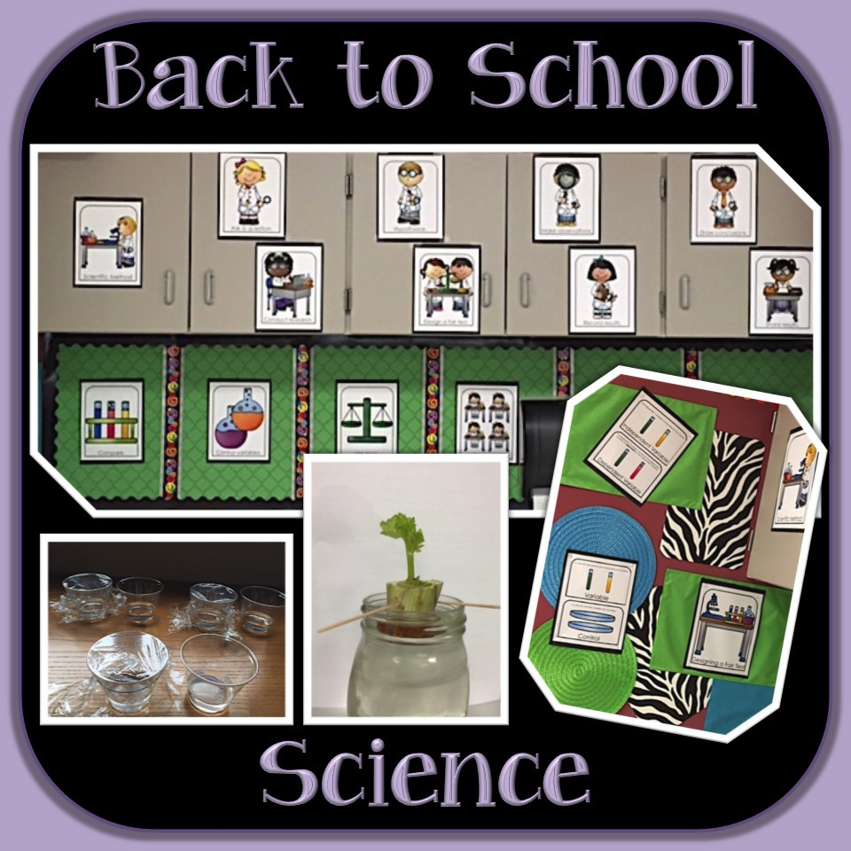 Back to School Science 1