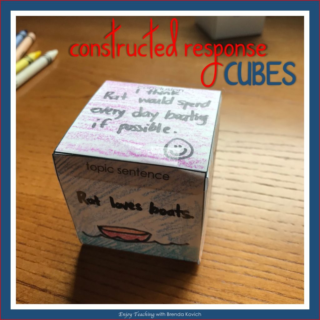 Constructed Response Cubes