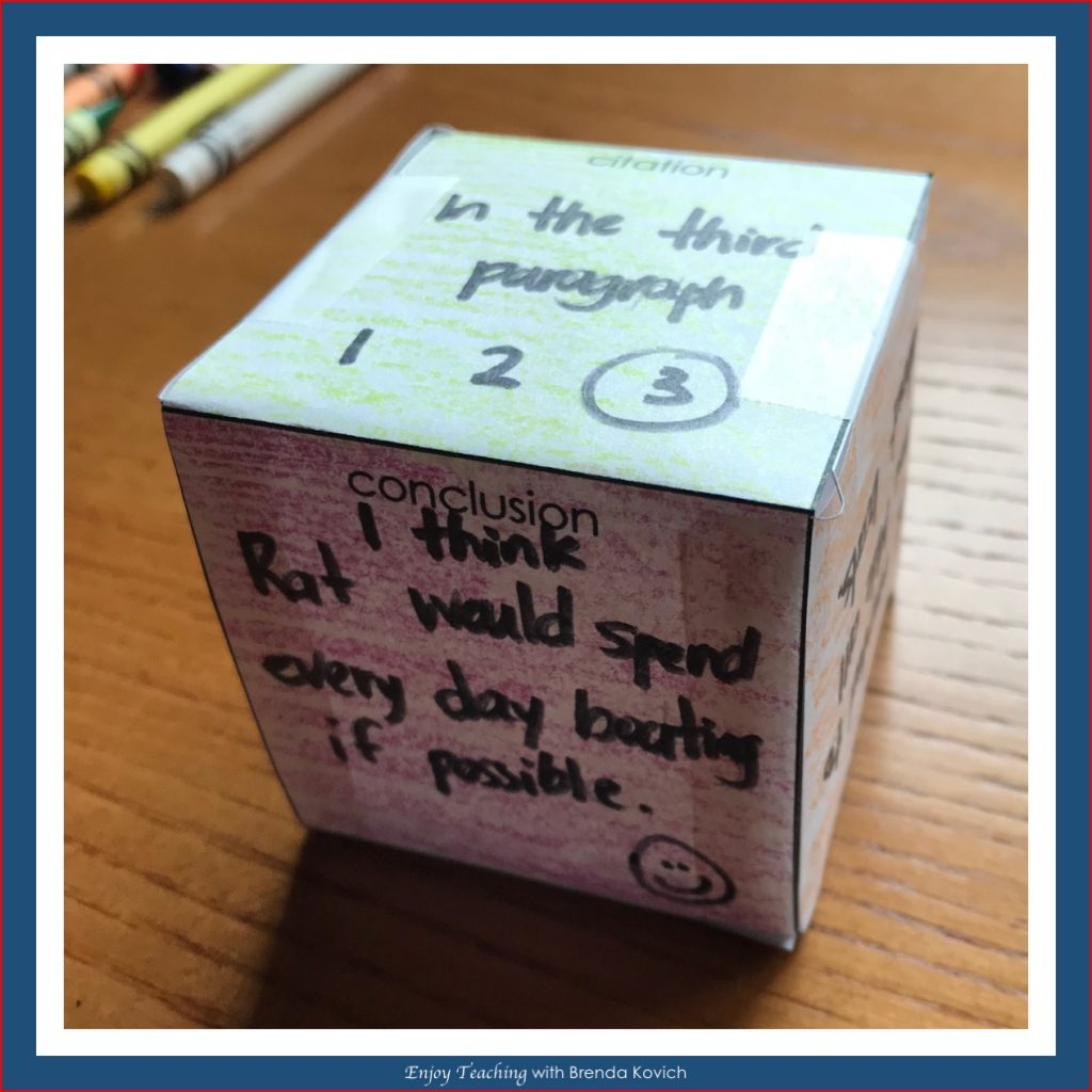 Constructed Response Cube - Responses