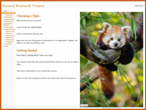Research Projects with Google Sites - Choosing a Topic