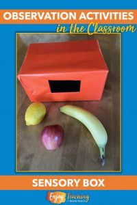 Heighten kids' sense of touch with a sensory box. Place common - or uncommon - objects in a box with a hole. See if they can name it.